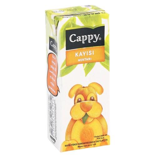CC. CAPPY KAYISI 200 ML